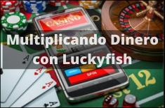 LuckyFish io